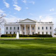 white house400by400