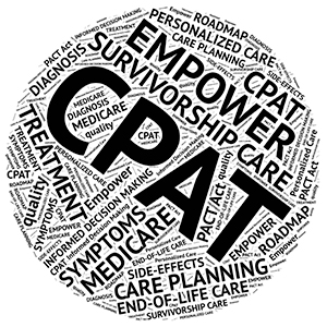 CPAT Word Cloud